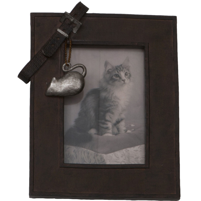 picture-frame-with-collar-cat_671_1_G